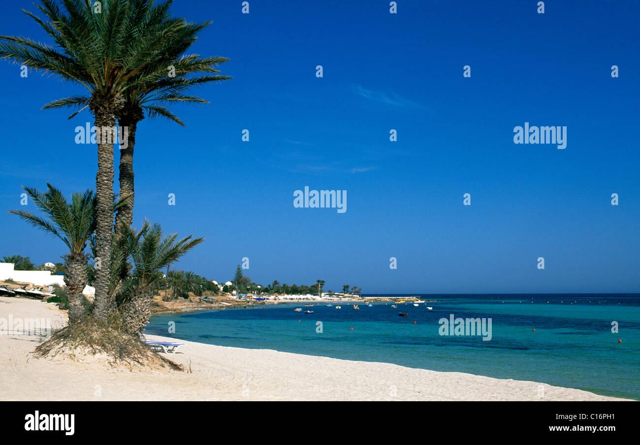 beach at club med djerba la douce djerba tunisia africa. Black Bedroom Furniture Sets. Home Design Ideas