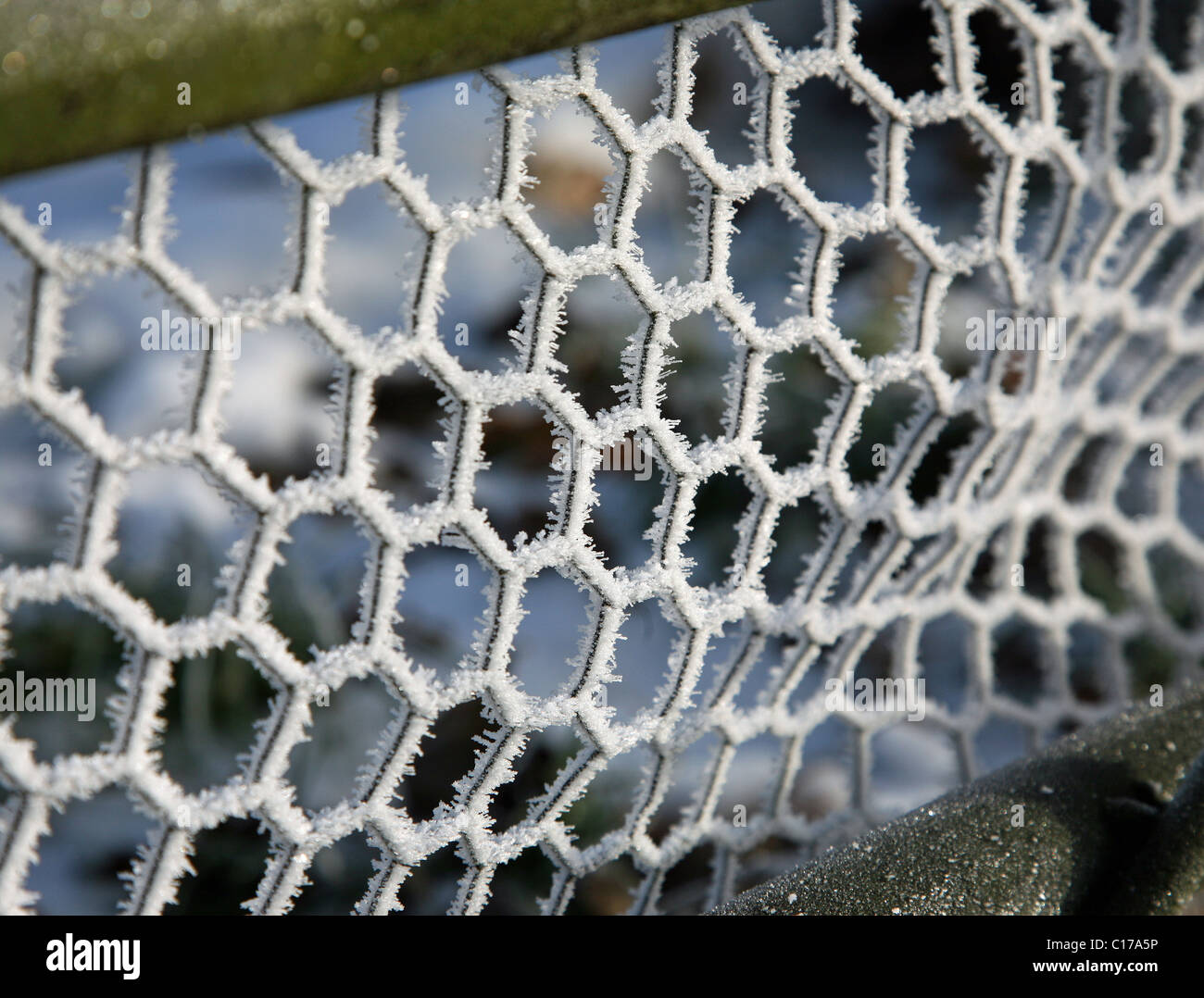 hexagonal fencing covered in hoar frost England, Winter 2010 - Stock Image