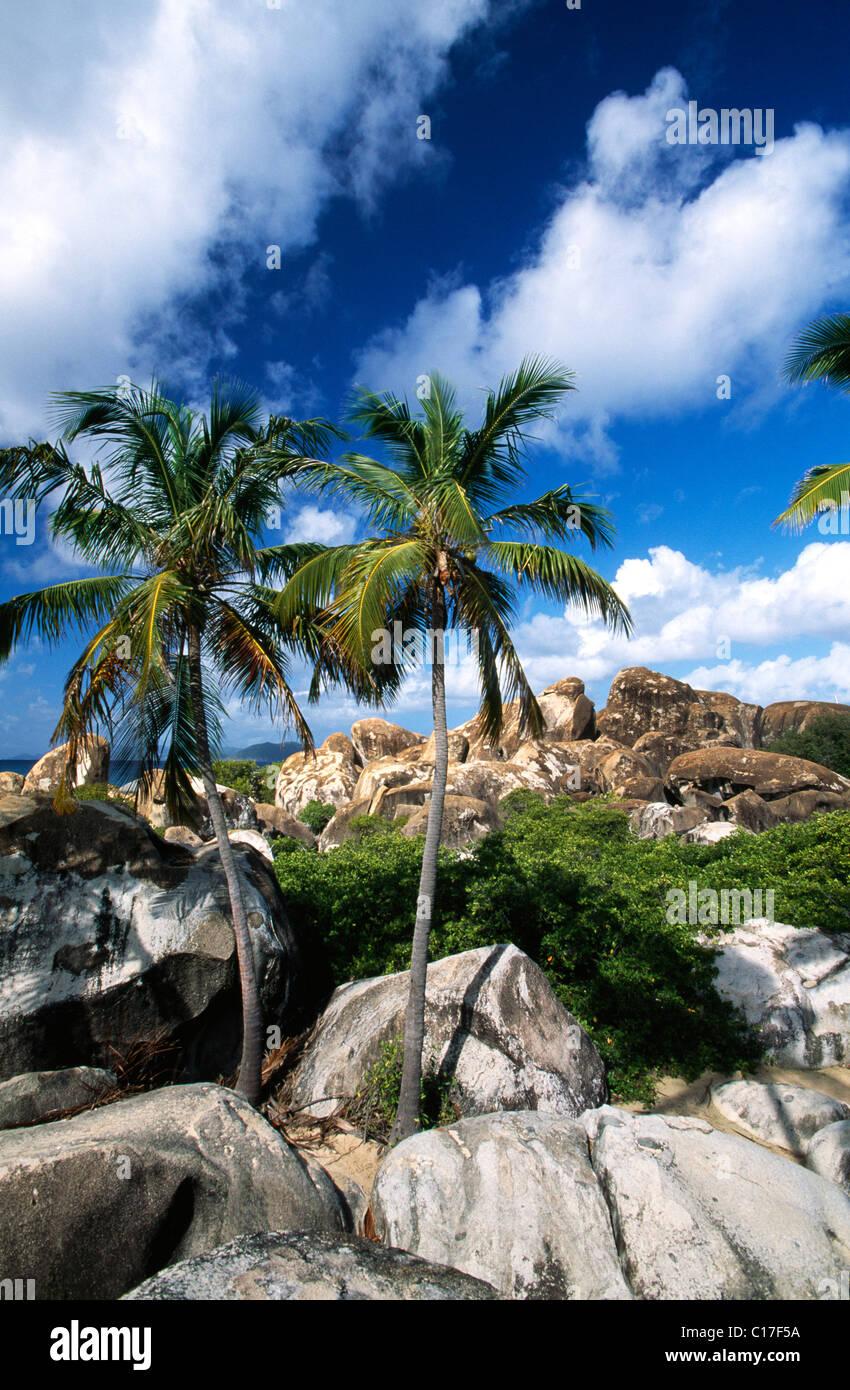 British virgin islands formation costs