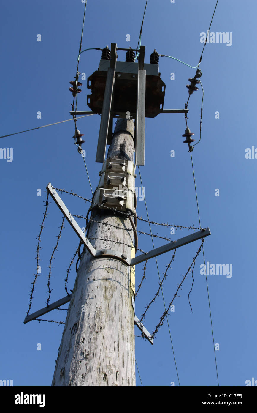 Electricity pole with barbwire security - Stock Image
