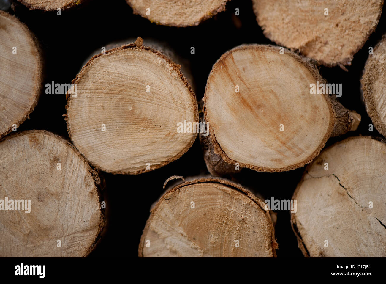 Stacked pile of firewood logs. - Stock Image