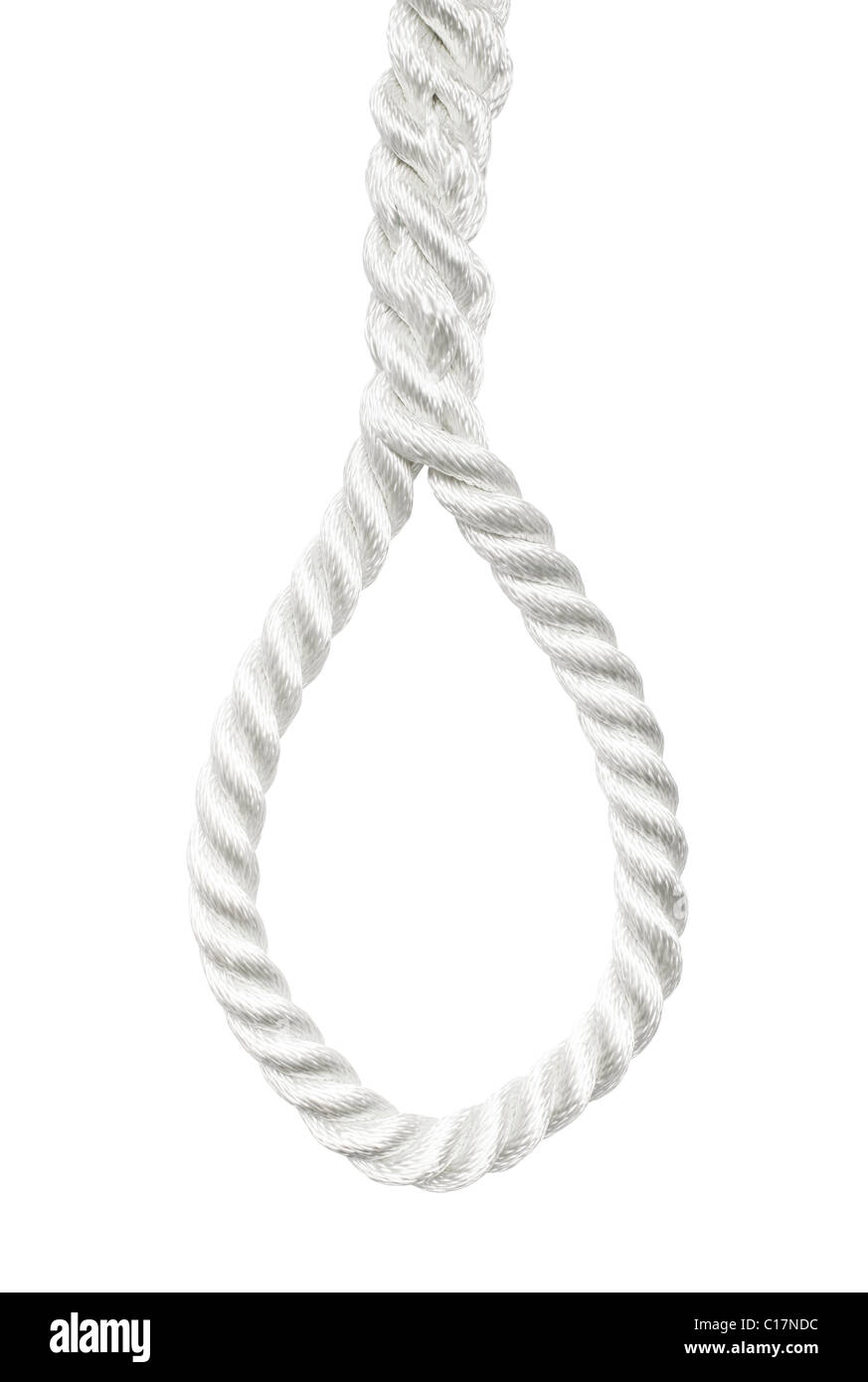 Rope with a hangmans noose isolated - Stock Image
