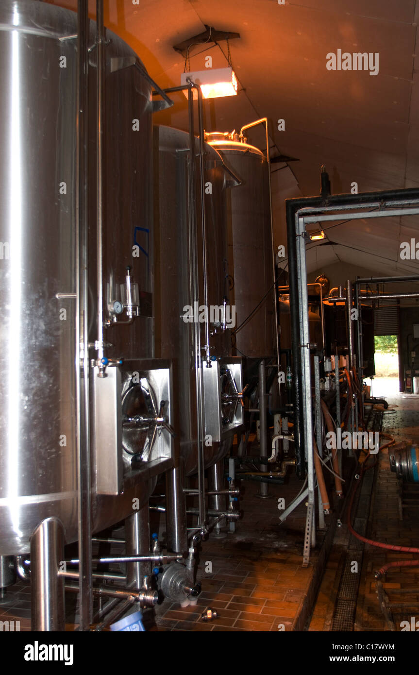 Whitstable Brewery, beer production for micro brewery - Stock Image