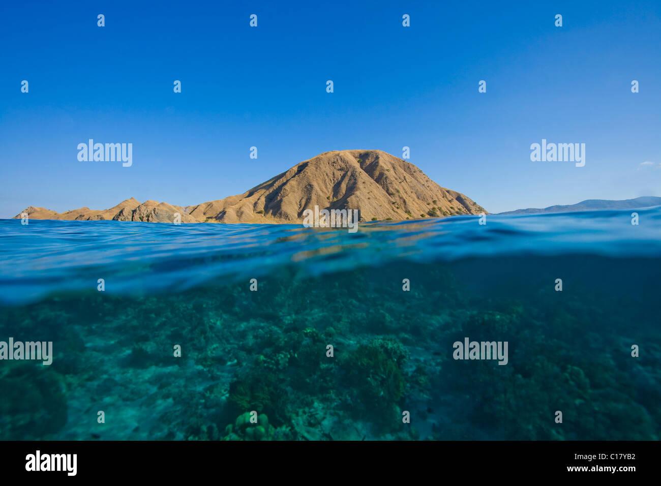Coral reef, Komodo, Lesser Sunda Islands, Indonesia, South East Asia - Stock Image