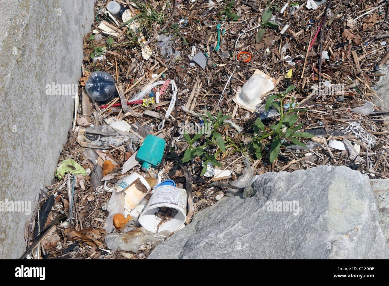 Ocean litter and beach wrack, near Newport, Rhode Island, New England, USA. - Stock Image