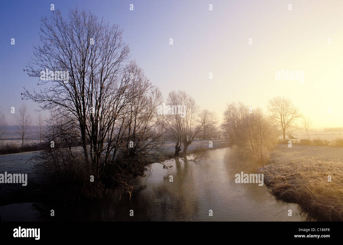 France, Yonne, Avallon region, river at early morning in Winter - Stock Image
