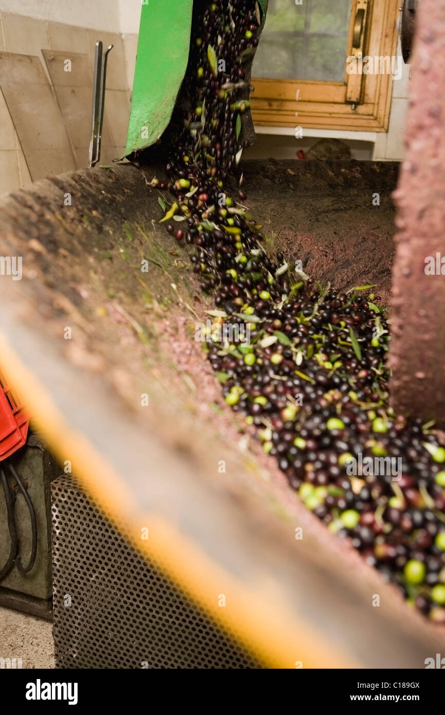 Olive mill - Stock Image