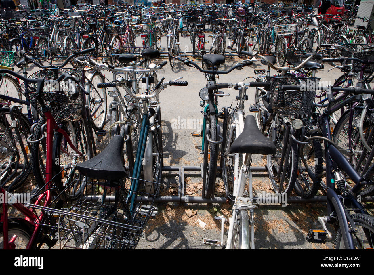 Many bicycles parked in a bicycle stand - Stock Image