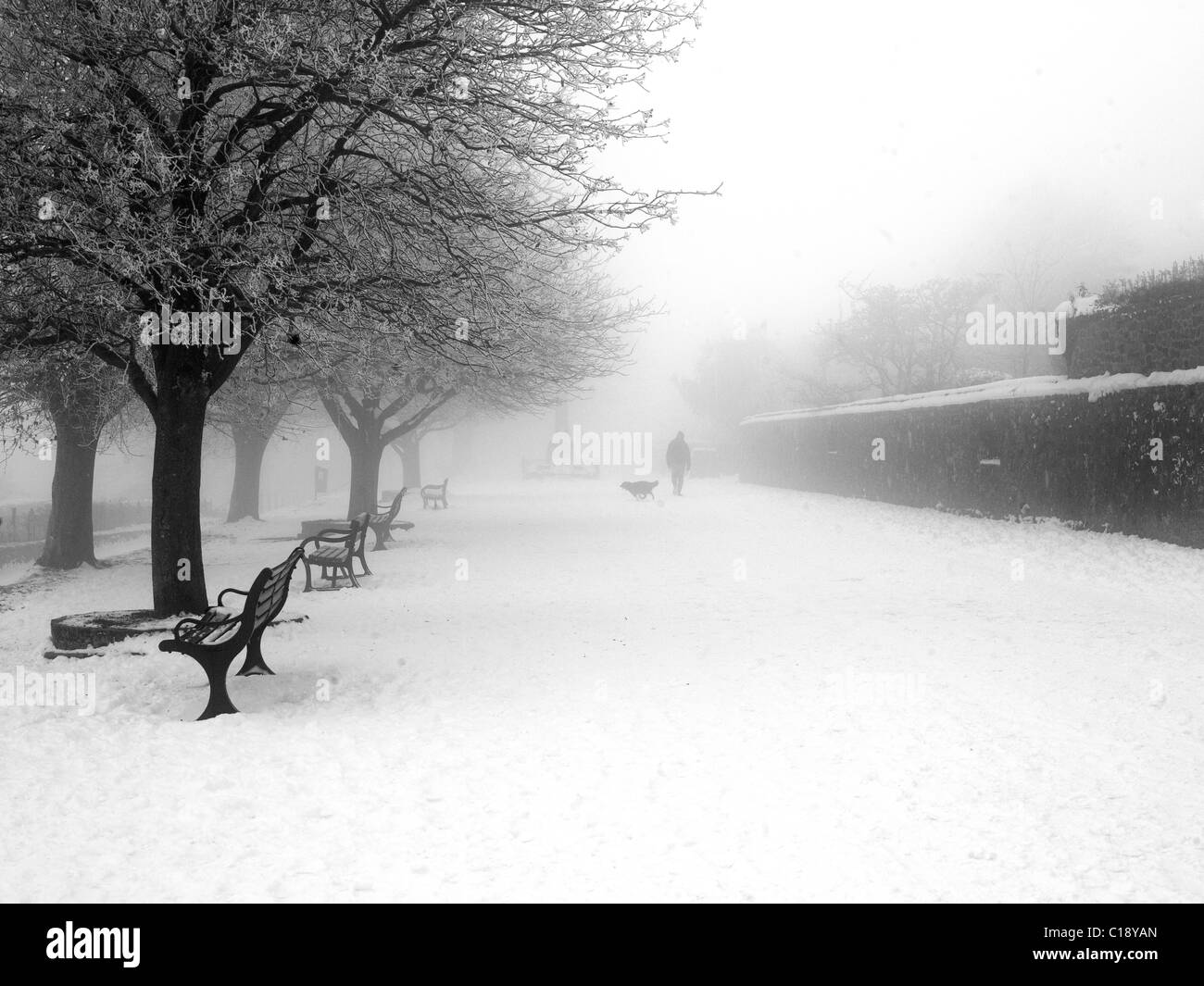 Man and dog in the snow. Shaftesbury england Winter snow scene England - Stock Image