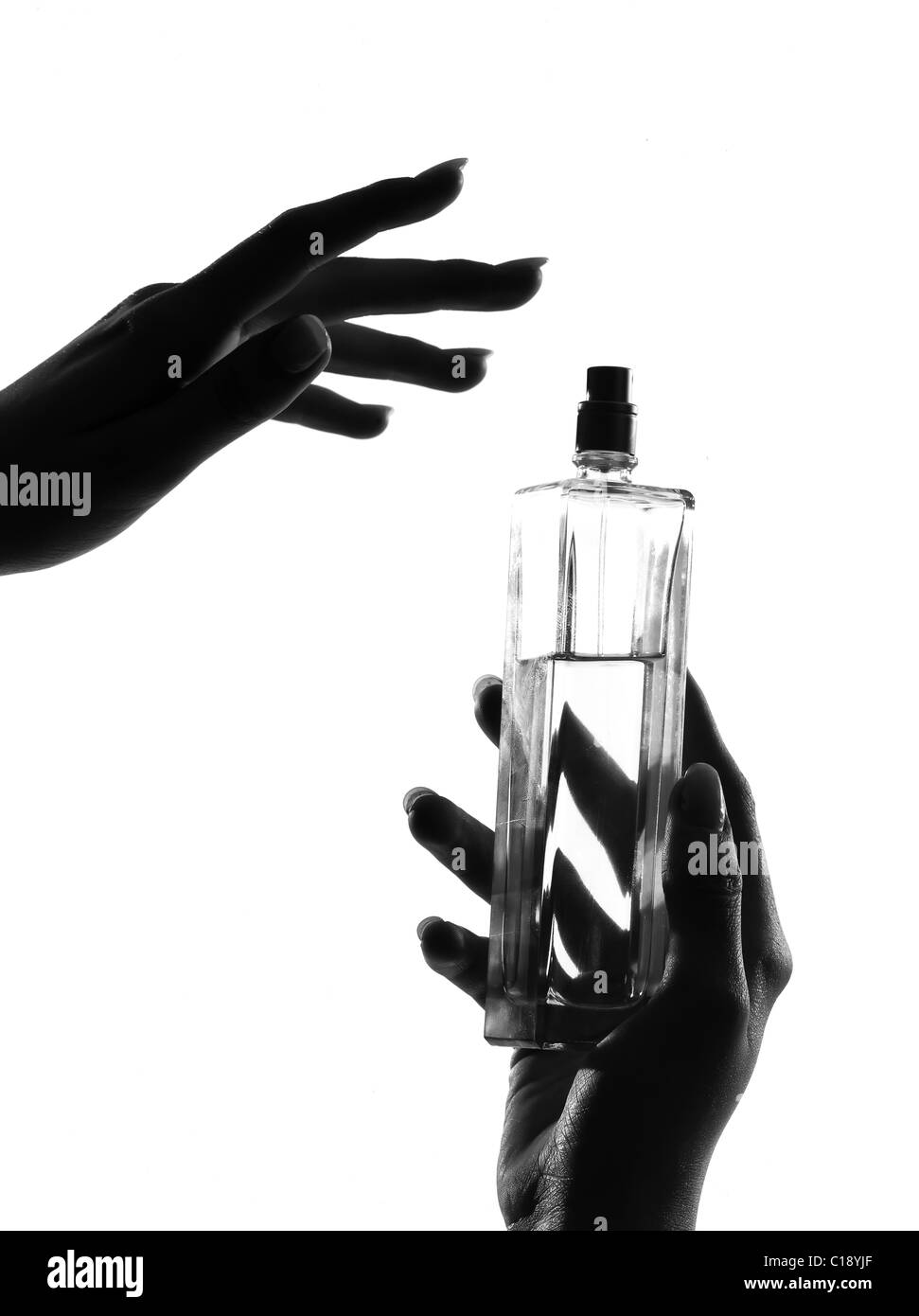 detail close-up silhouette in shadow of a  woman hands holding perfume in studio on white background isolated - Stock Image
