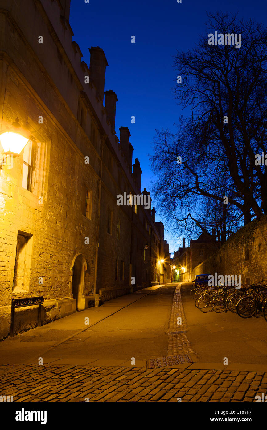 Brasenose Lane, evening light, Oxford University, Oxford, Oxfordshire, England, UK, United Kingdom, GB, Great Britain, - Stock Image