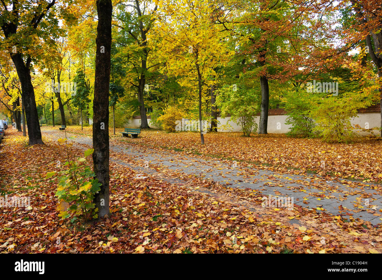 Autumnal path along the wall of the Ostfriedhof, cemetery in the east of Munich, Bavaria, Germany, Europe Stock Photo
