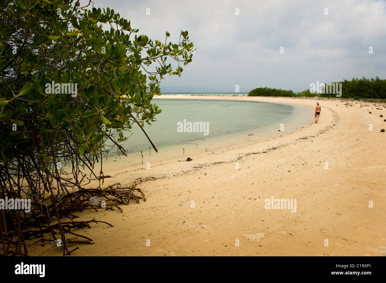Menjangan Island is a dive destination located in the northwest corner of Bali, Indonesia with beautiful white sand - Stock Image
