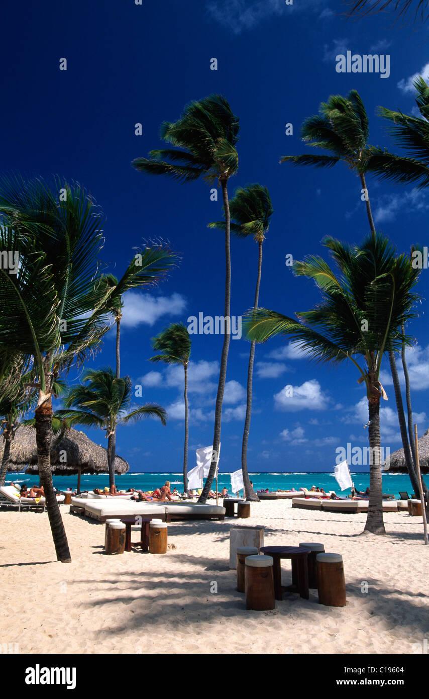 sunshades deck chairs palm beach playa bavaro near punta cana