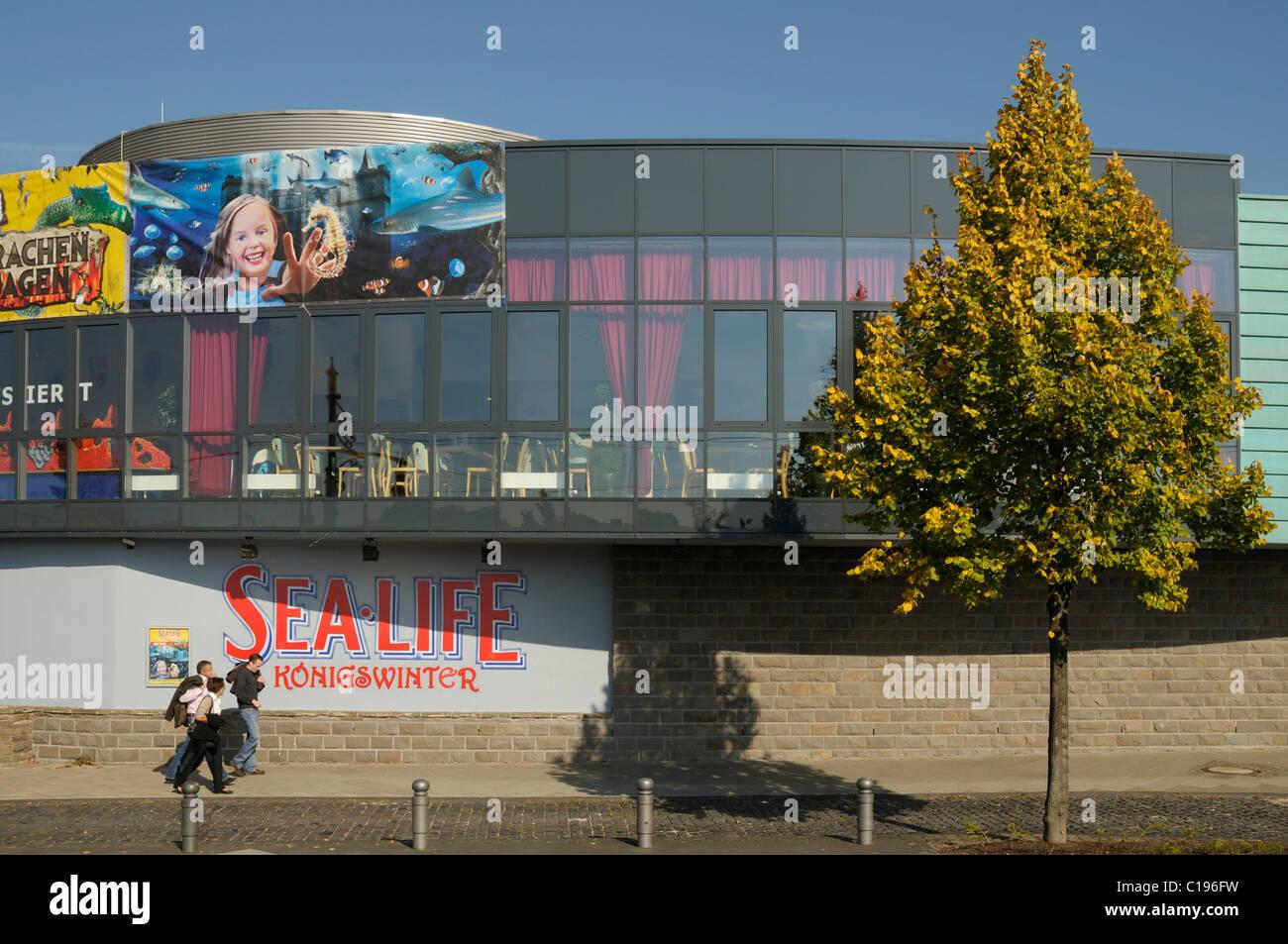 Sealife Centre Koenigswinter, giant aquarium, view of the building from the Rhine side, Koenigswinter, North Rhine - Stock Image