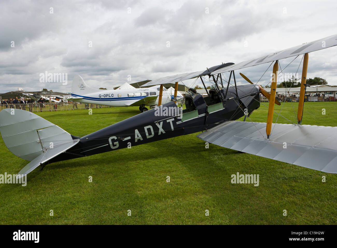 Tiger Moth at Goodwood revival - Stock Image