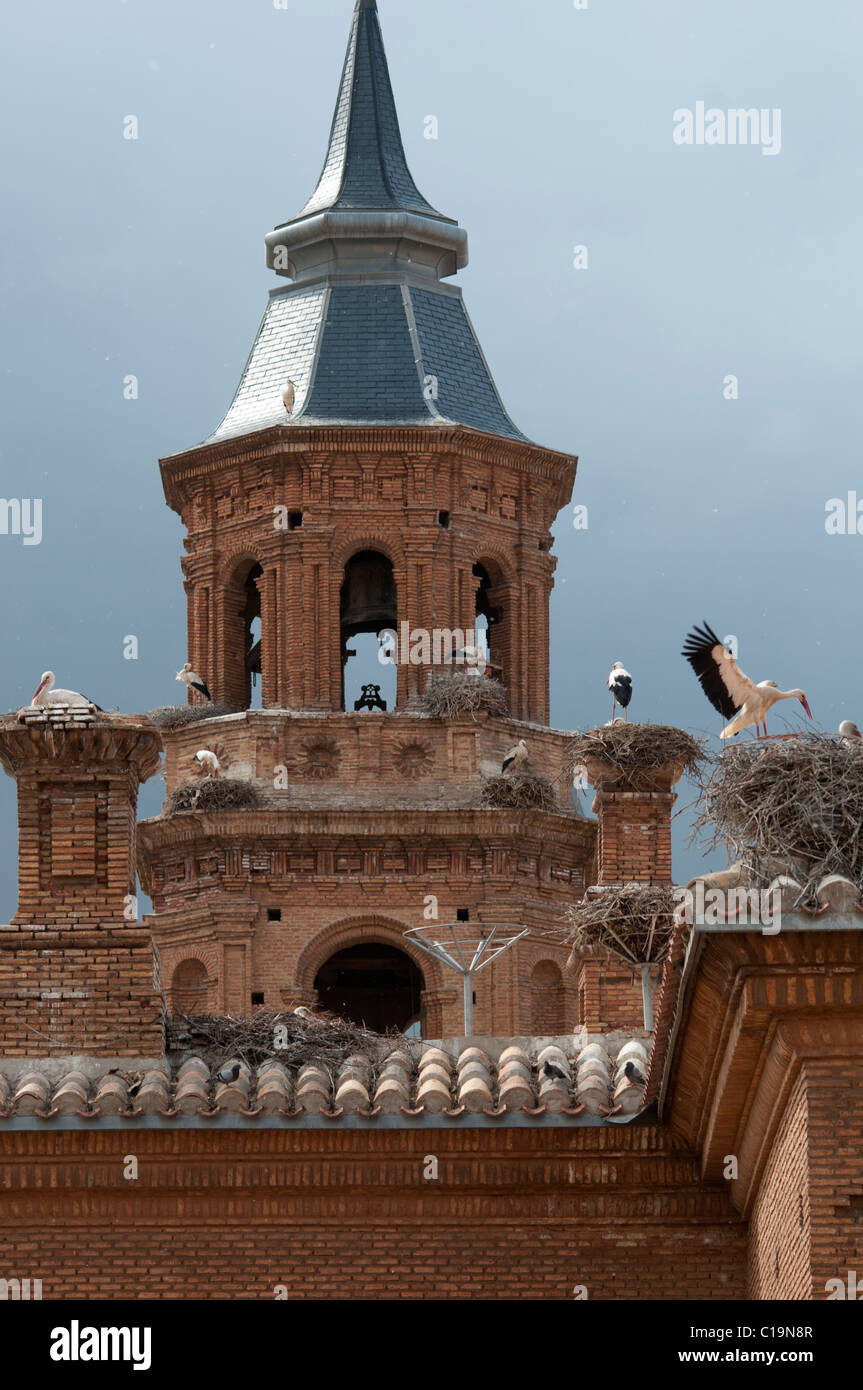 Alfaro Cathedral with White Stork colony Alfaro Spain - Stock Image