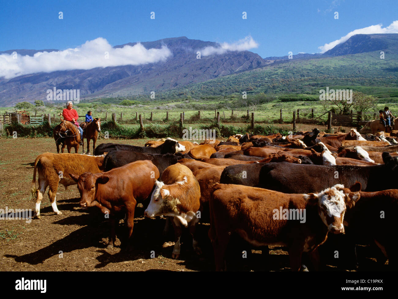 a4b546b2ed46e Kaupo ranch