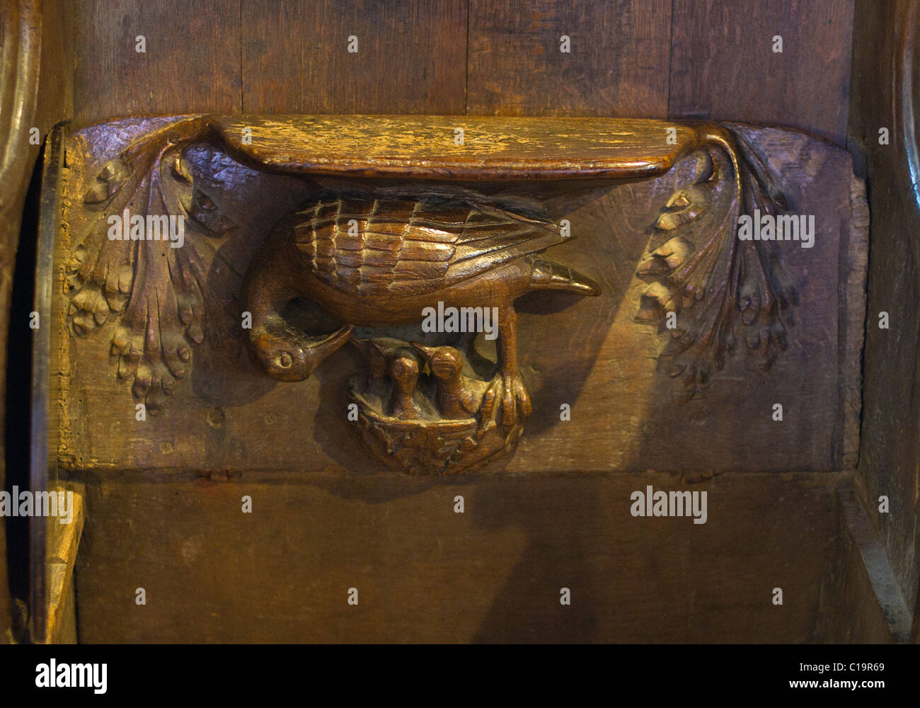 A Pelican in her piety decorating a Misericord in Lavenham Church Suffolk - Stock Image