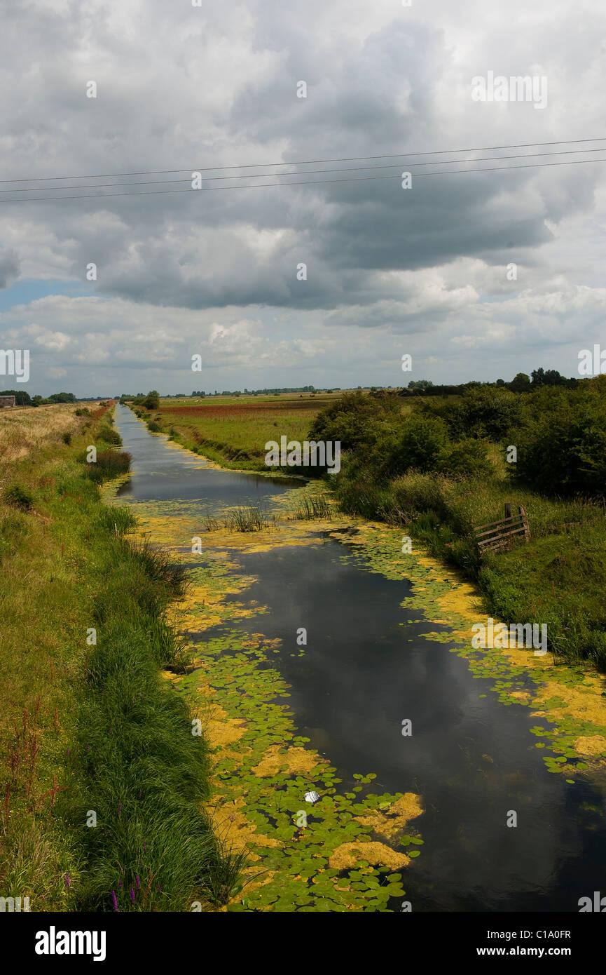 Drainage Canal near Ely, Cambridgeshire - Stock Image