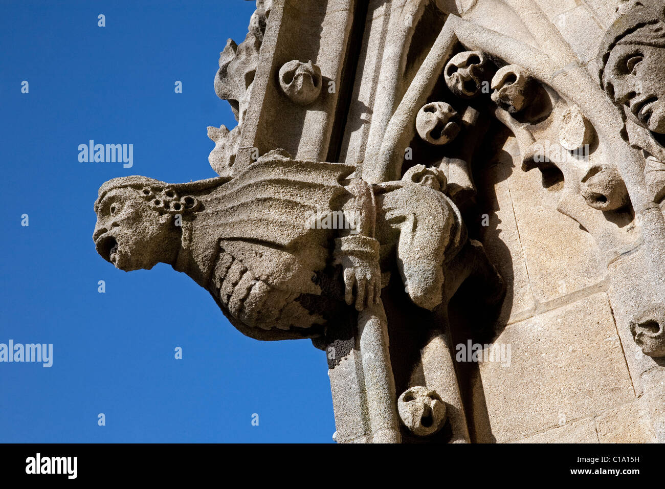 Gargoyle on the tower of St. Mary's / University Church of St Mary the Virgin in Oxford, Oxfordshire, England, - Stock Image
