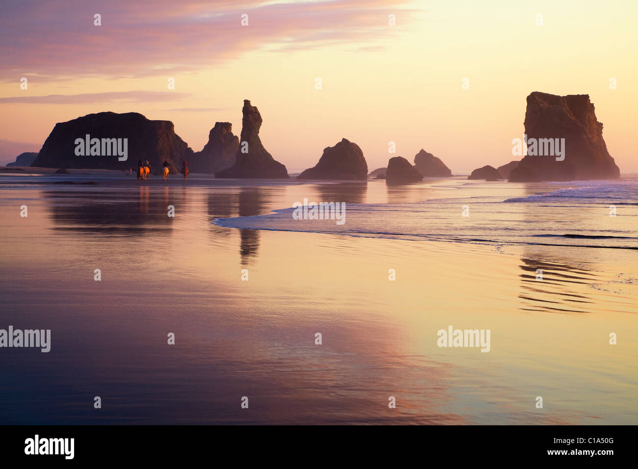 Tourists riding horses on pacific ocean beach in golden sunset, Haystack rocks, cloud reflections in wet sand at Stock Photo