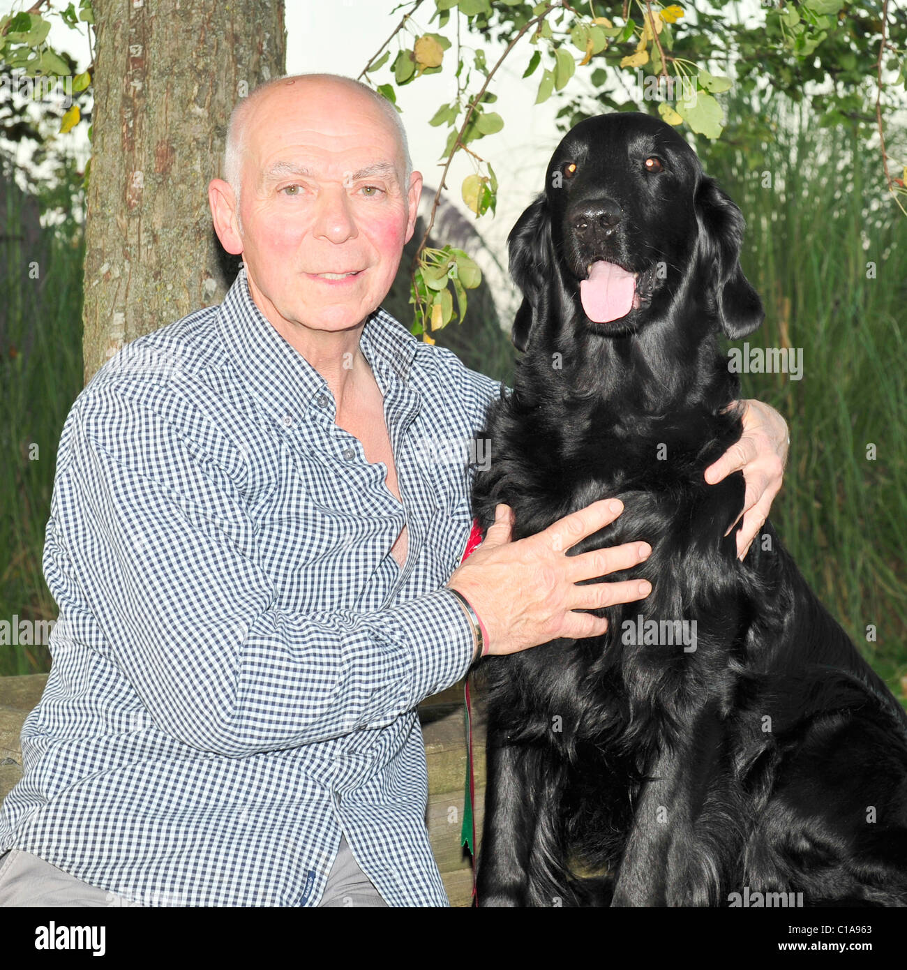 jim irving and jet the winner of crufts best in show - Stock Image