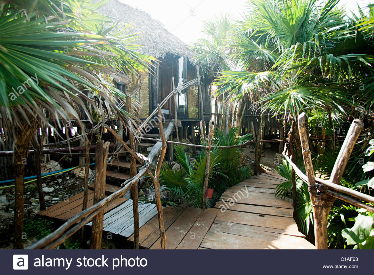Beach hut decking and palm trees Stock Photo: 35266927 - Alamy