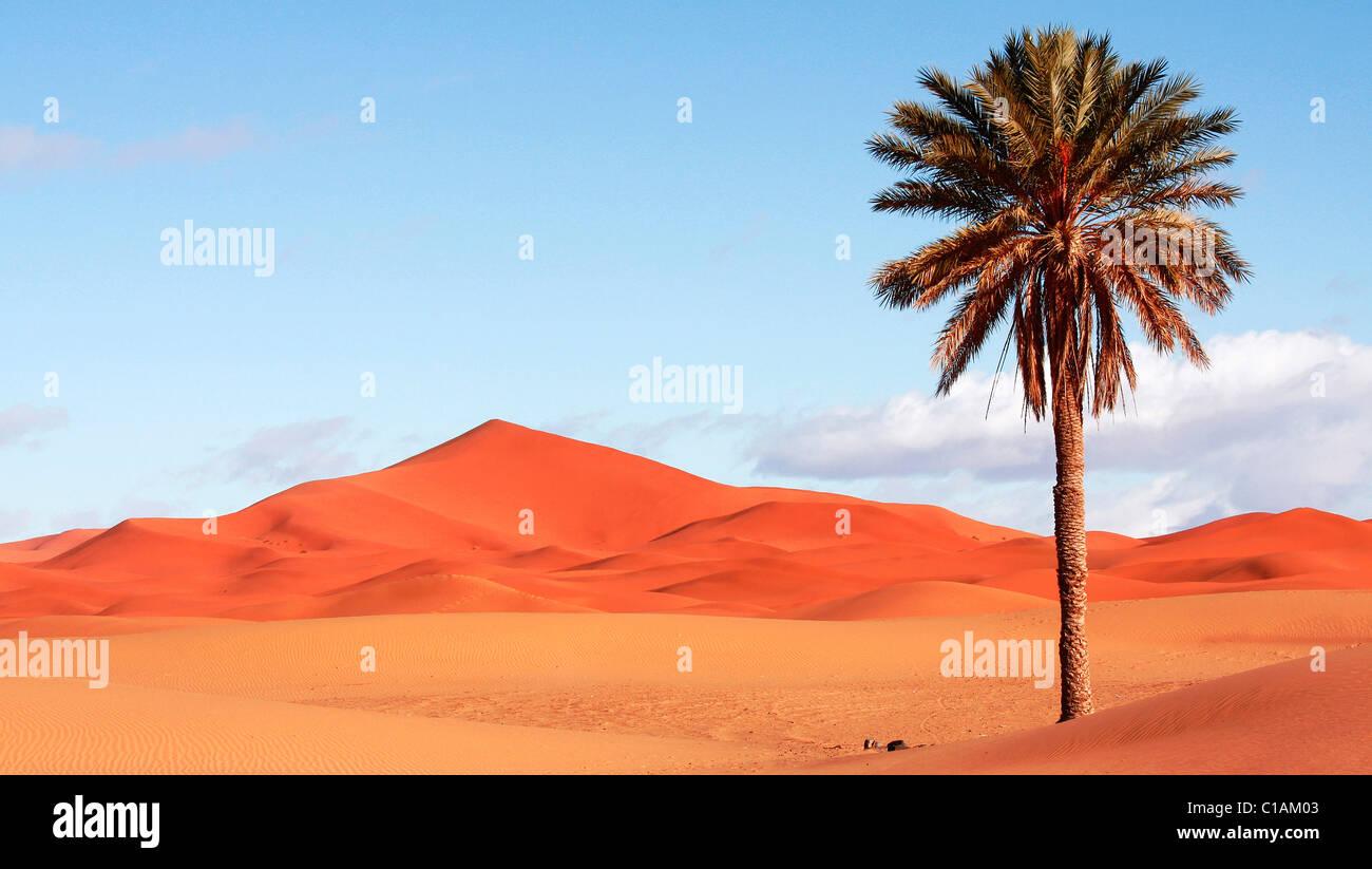 Sahara desert, Morocco, North Africa Stock Photo
