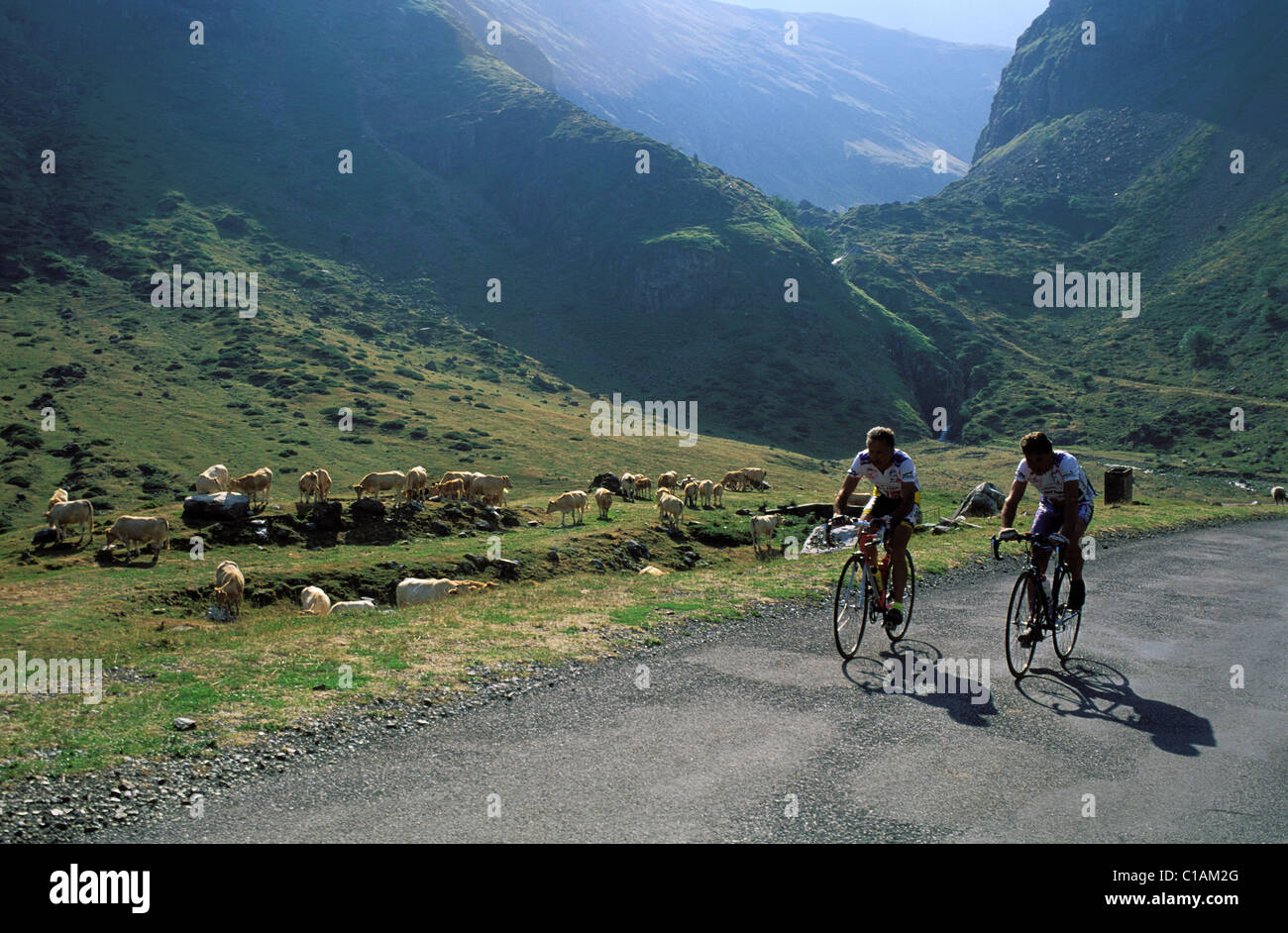 France, Hautes Pyrenees, cirque of Gabiedou in Troumousse valley Stock Photo