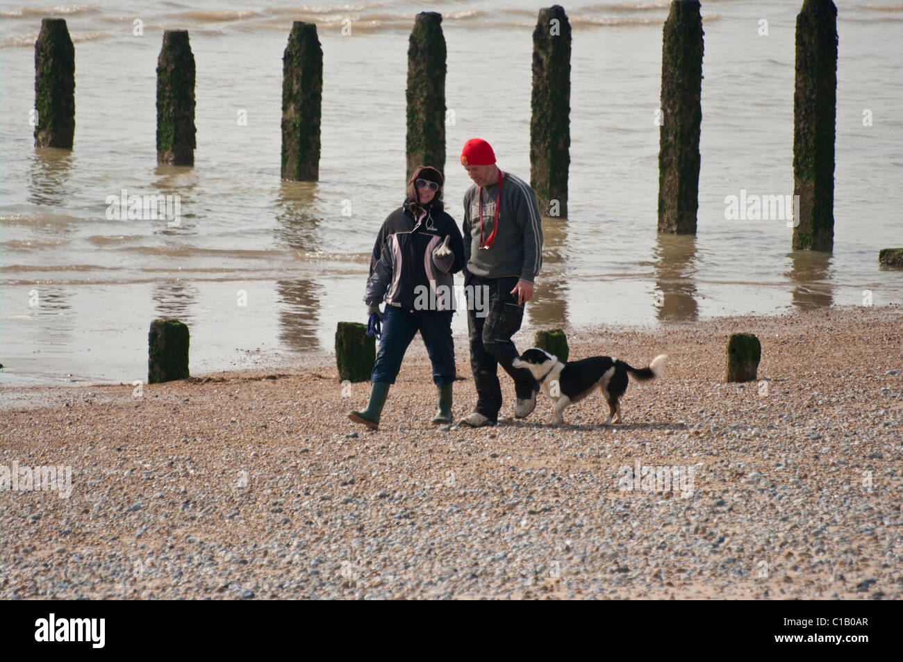 Couple Walking A Dog On The Beach On A Winters Day Stock Photo