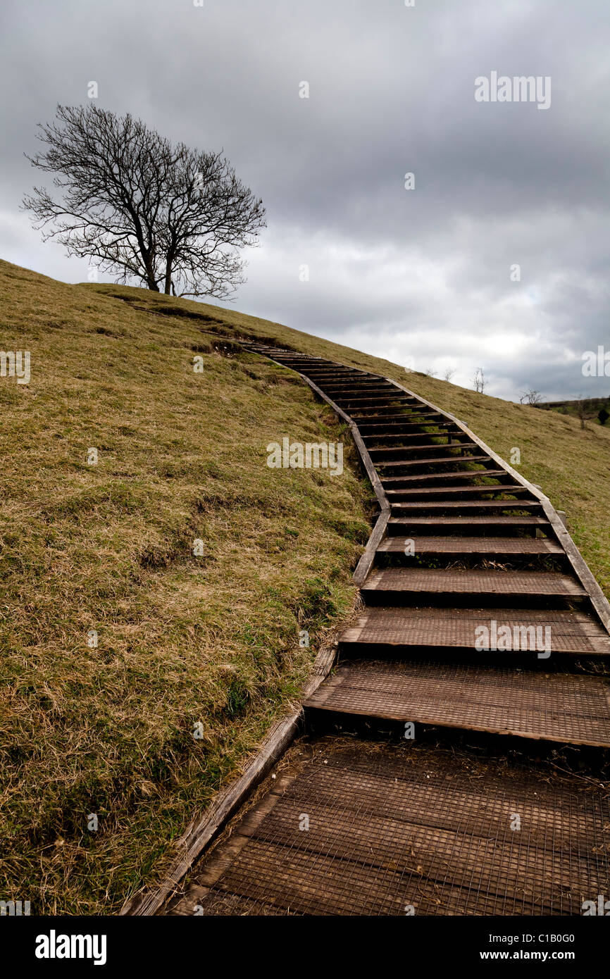 wooden steps giving easy access to the top od St Catherines Hill Winchester - Stock Image