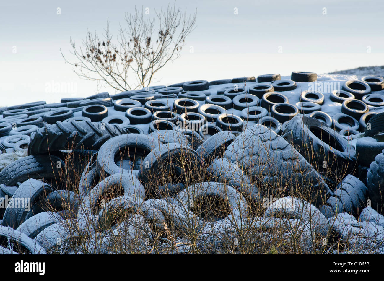 Large pile of assorted used tyres surrounding and on top of a silage clamp with frosty covering - Stock Image