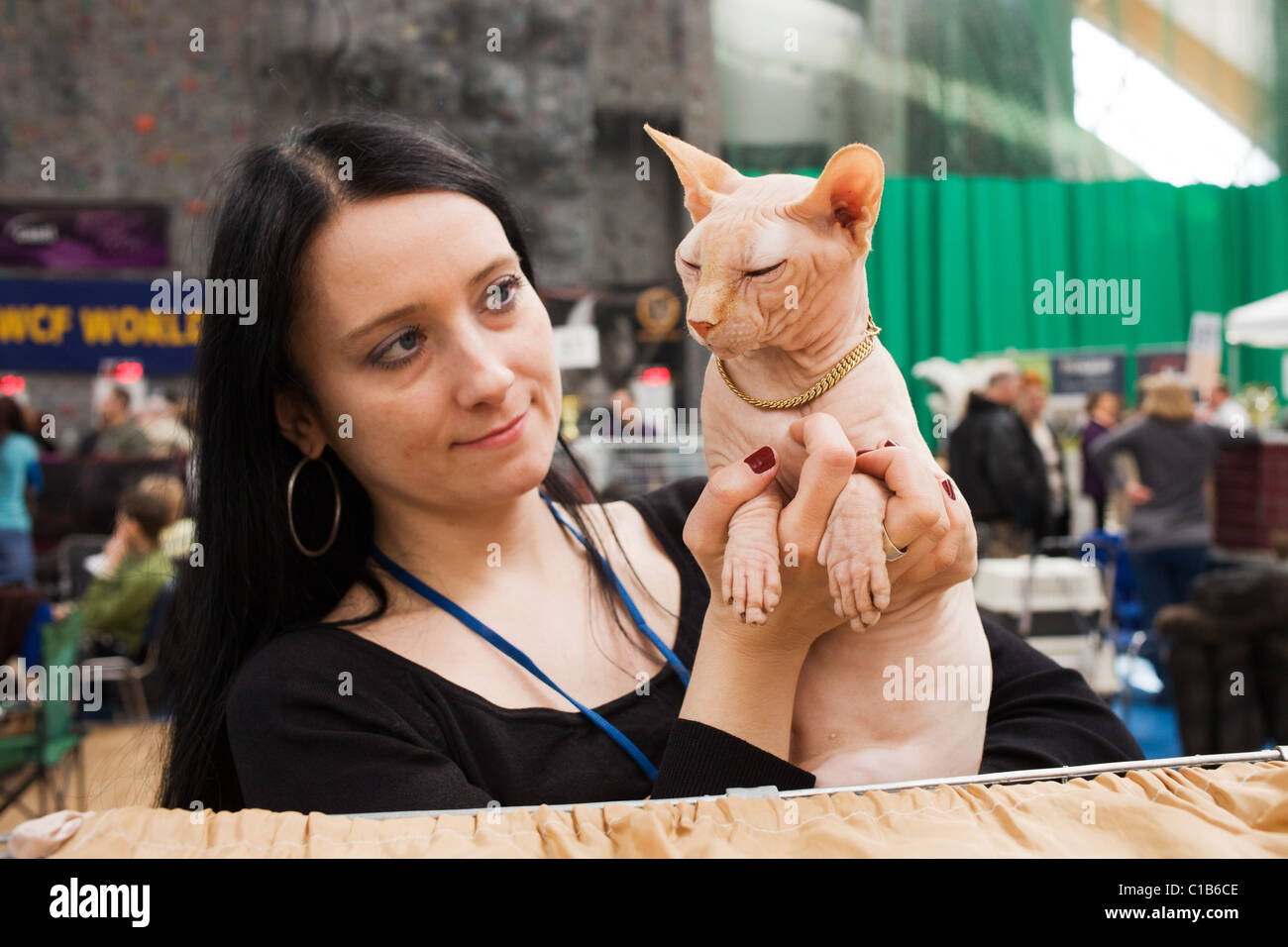 Breeder presents a hairless Sphynks cat at WCF World Show on March 13, 2011, Warsaw, Poland - Stock Image