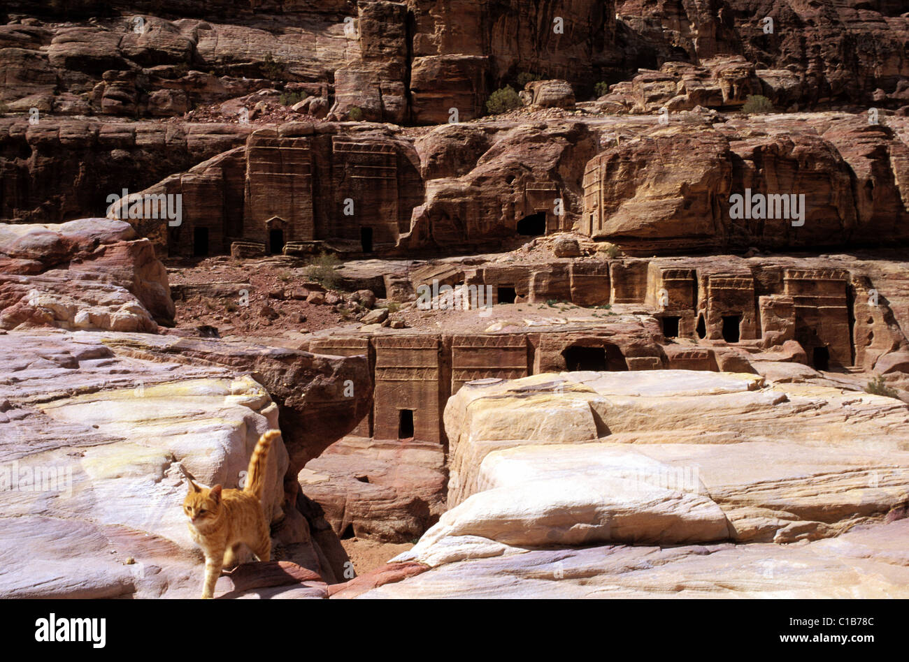Jordan, Petra, the street of facades in the valley of Wadi Mousa Stock Photo