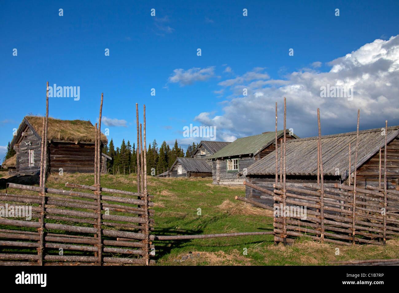Log cabins of farm with sod roof at Jaemtland / Jämtland, Sweden - Stock Image