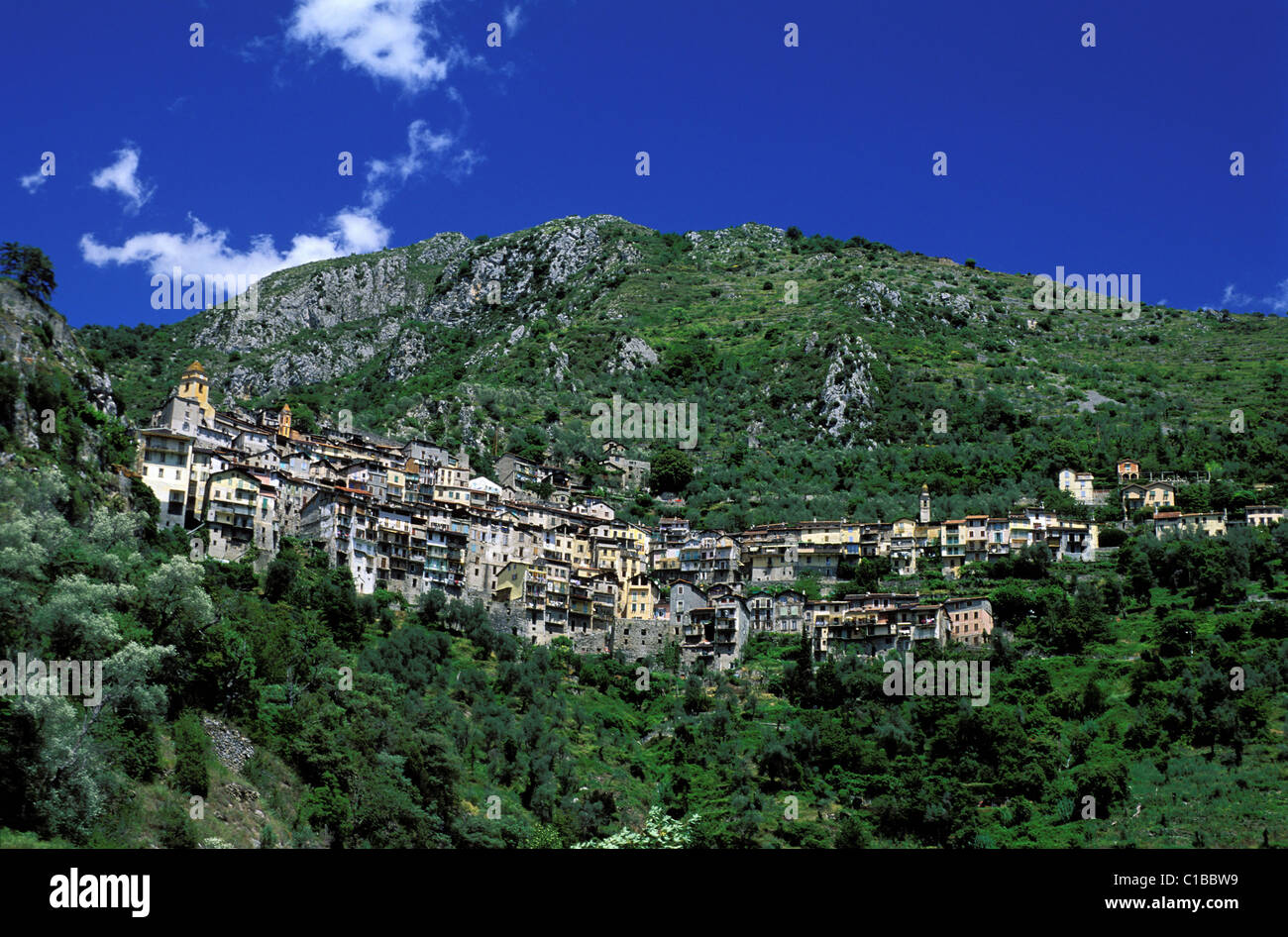 France, Alpes Maritimes, Valley of the Roya (hinterland of Nice), perched village of Saorge - Stock Image