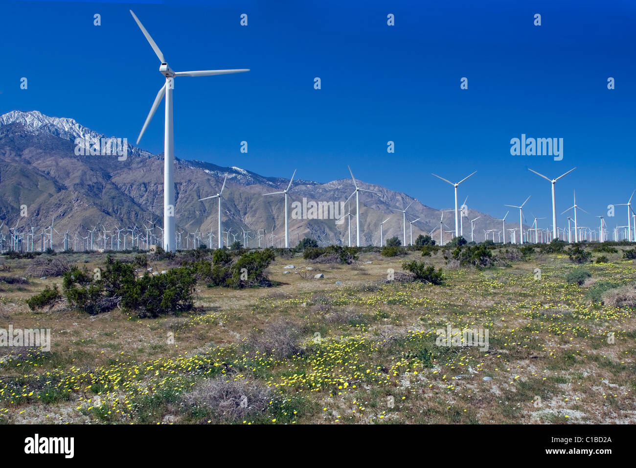 A wind farm in the desert of California. - Stock Image