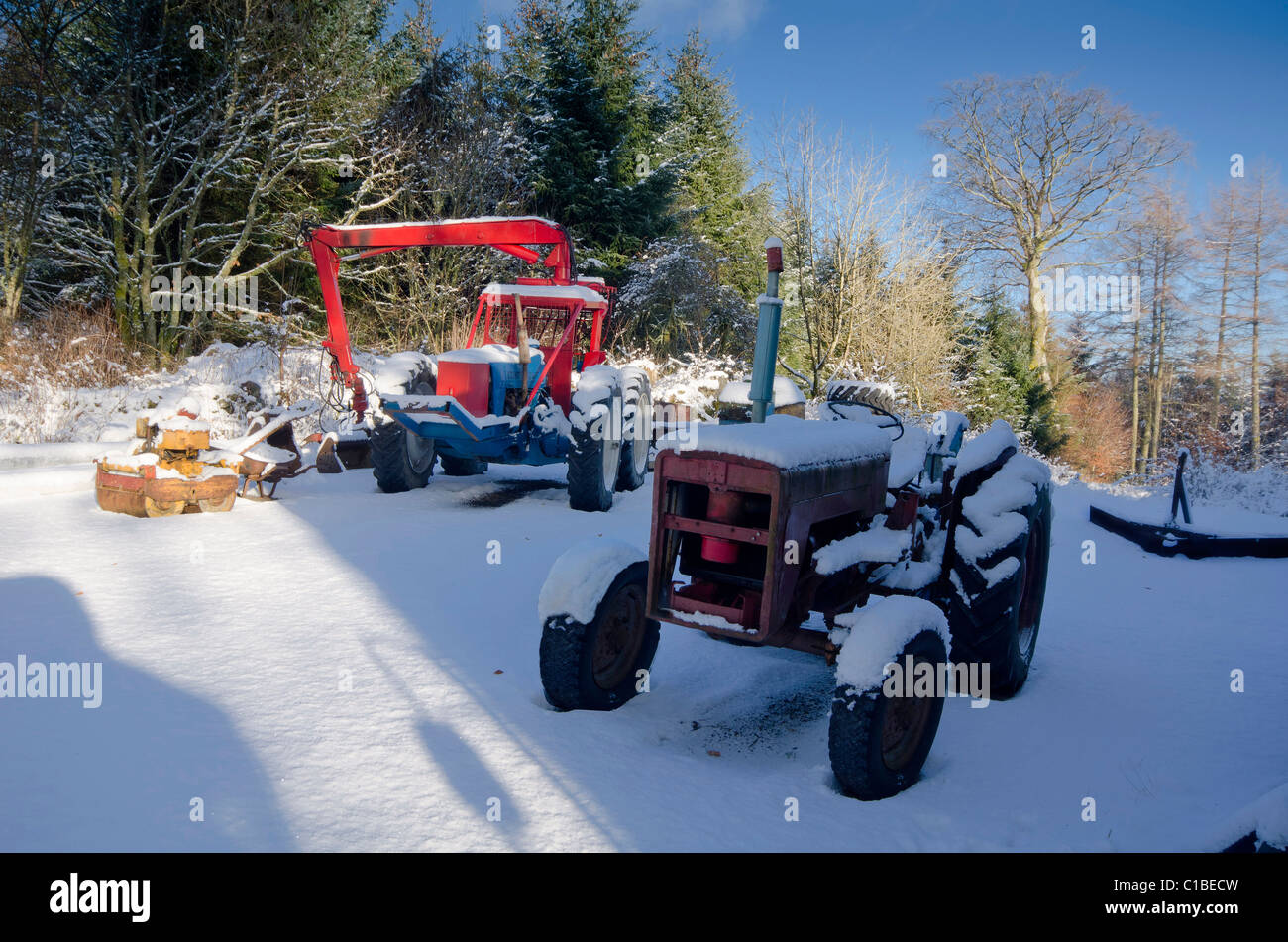 Two working tractors in forestry yard after heavy fall of snow in bright sunshine - Stock Image
