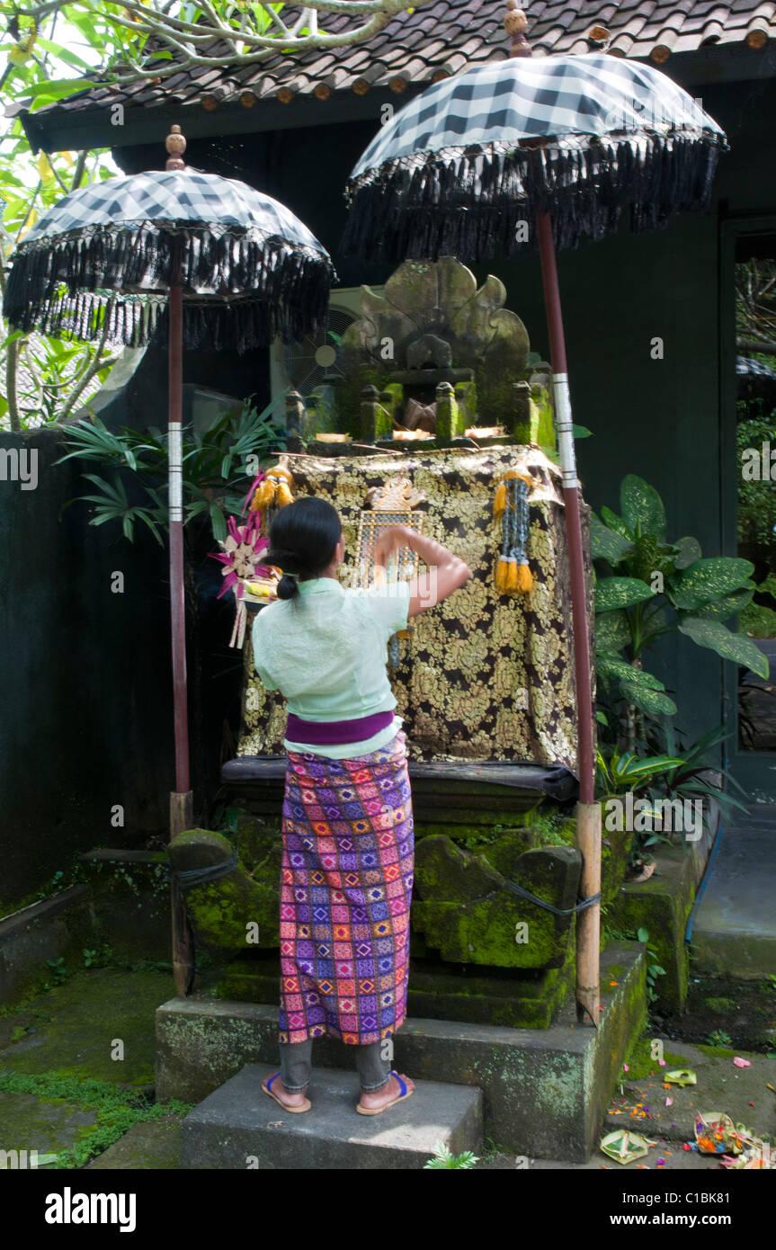 Balinese woman making morning offerings at a shrine in Ubud Bali Indonesia Ubud - Stock Image