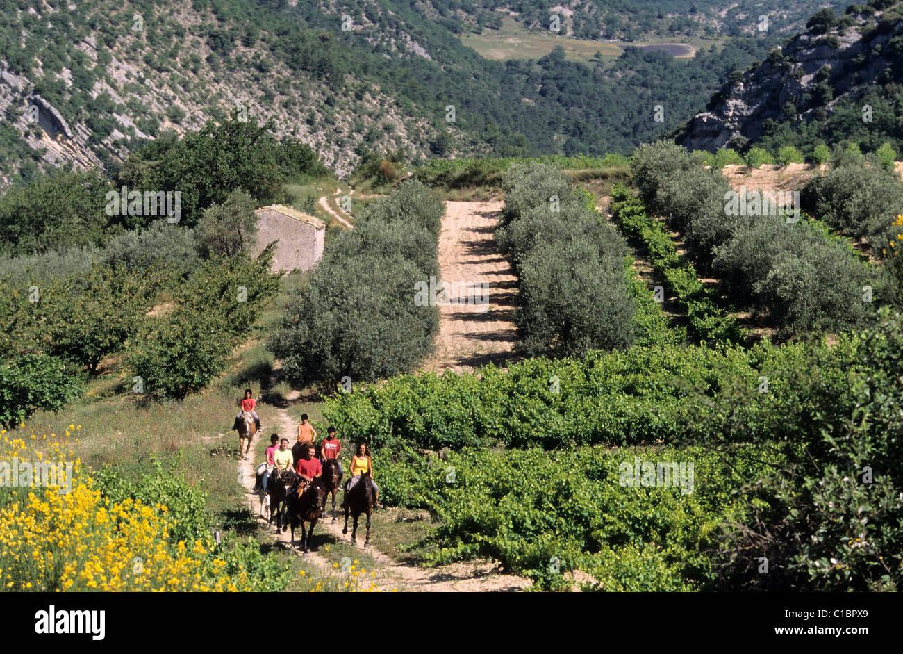 France, Drome, paysage des Baronnies - Stock Image