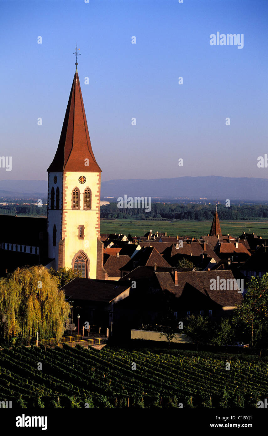 France, Haut Rhin, village of Anmeswihr in the midst of the vineyards, on the Alsace Wine Route - Stock Image