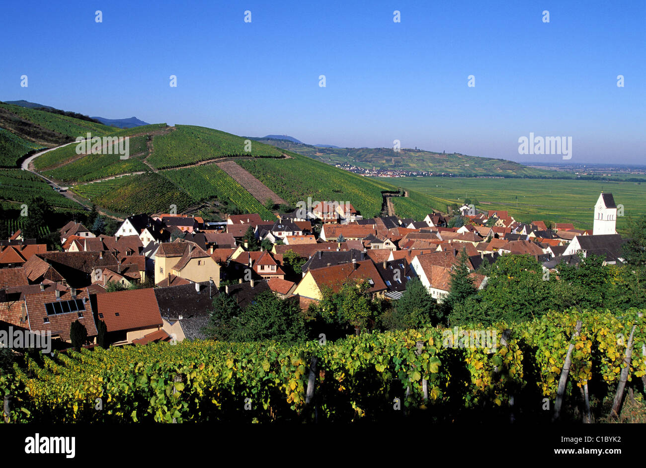 France, Haut Rhin, village of Kazenthal in the midst if the vineyards, on the Alsace Wine Route Stock Photo