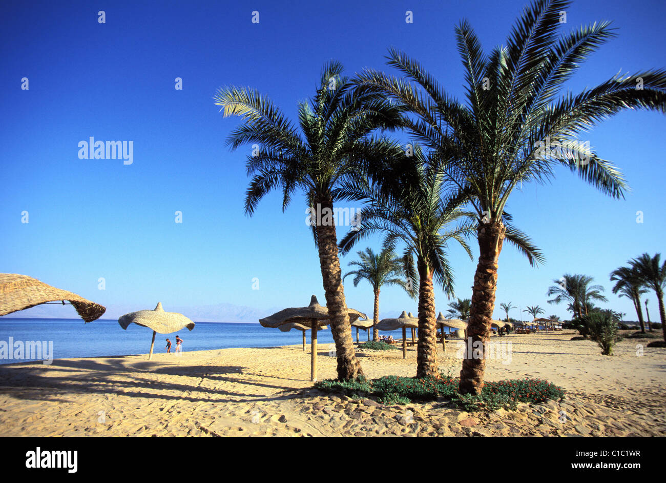 Egypt, Sinai Peninsula, the beach of Nuweiba, a little seaside resort in the Aqaba Gulf - Stock Image