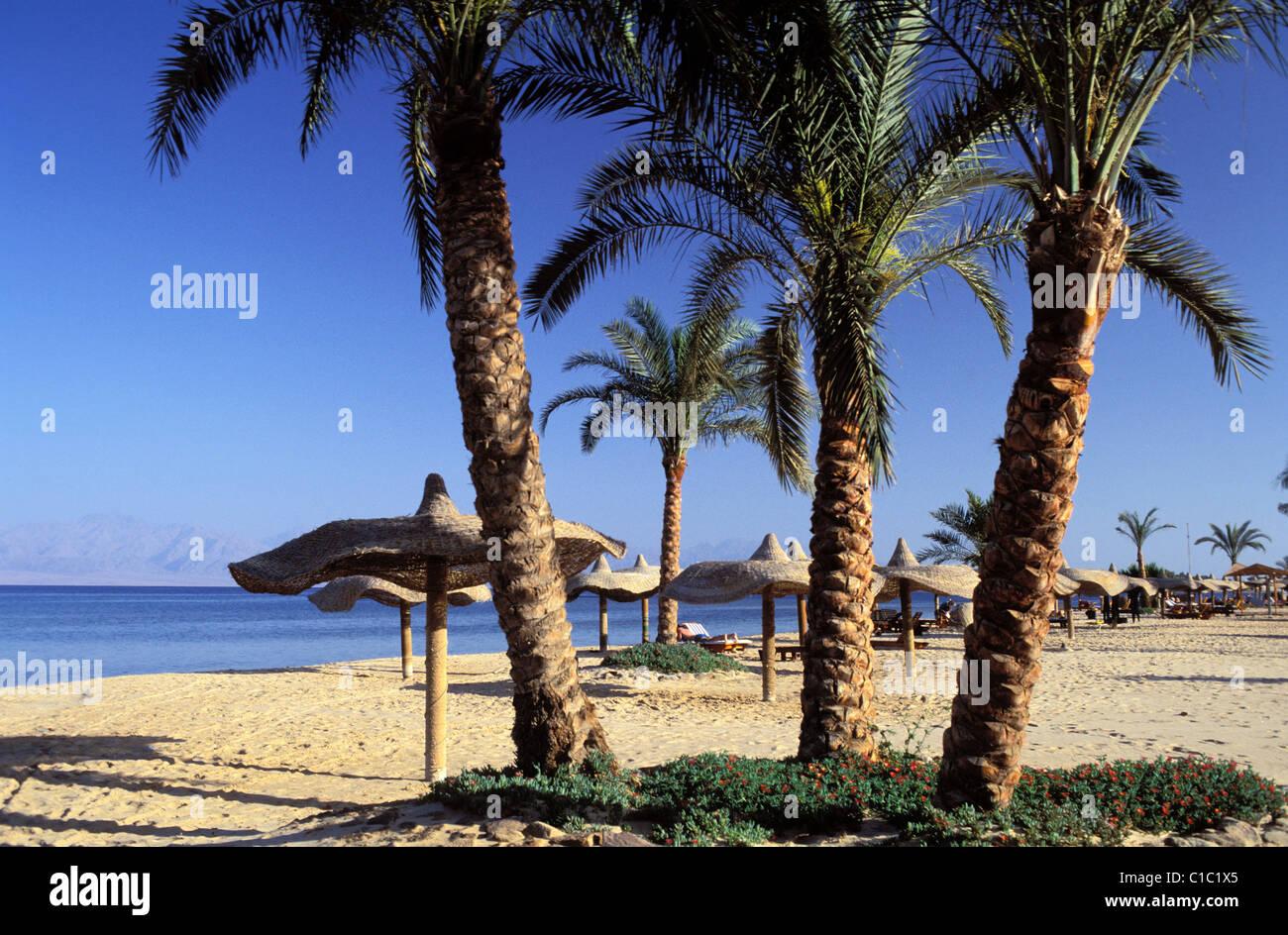 Egypt, Sinai peninsula, the beach of Nuweiba, a little seaside resort in the gulf of Aqaba - Stock Image