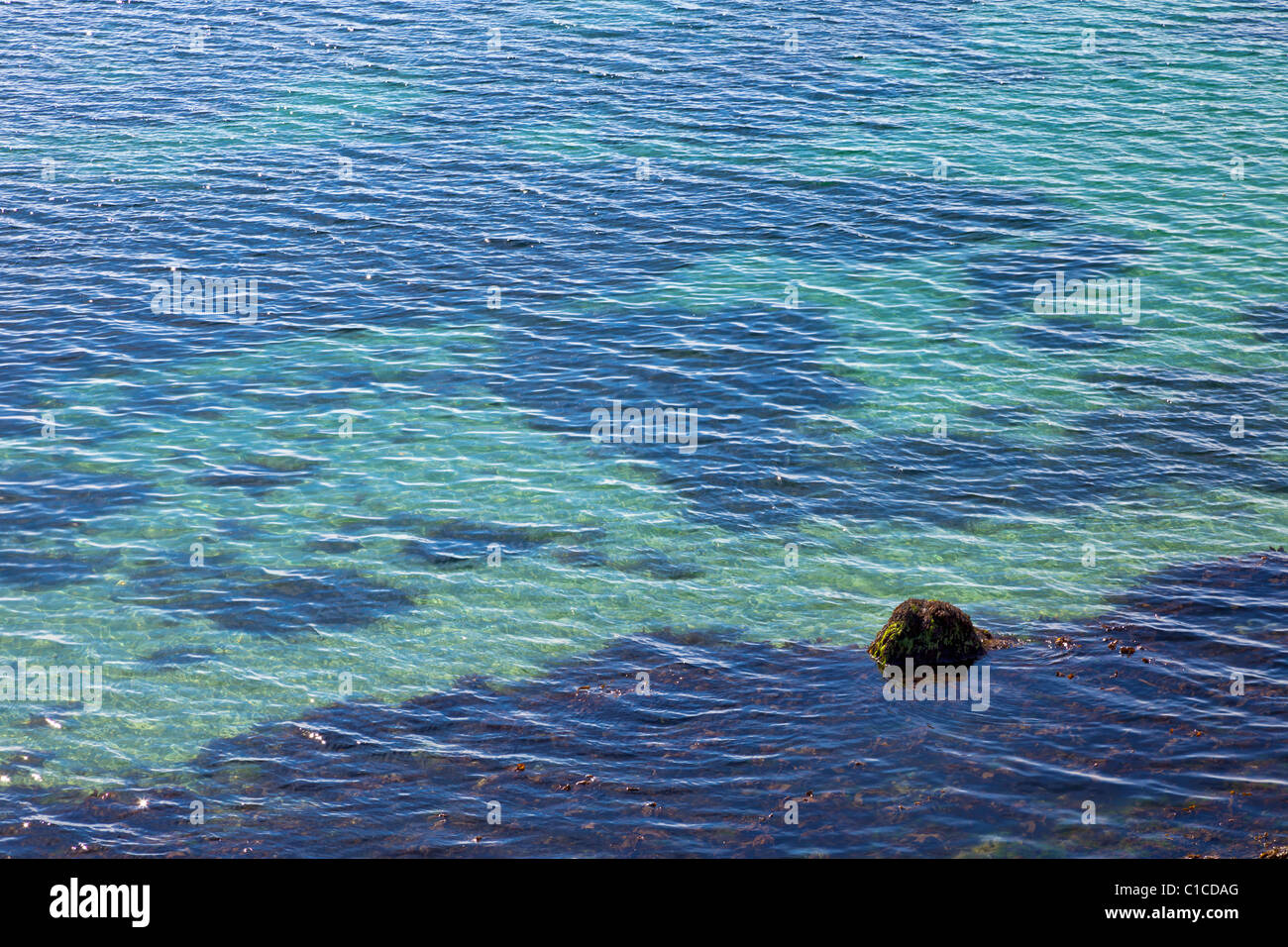 Shallow sea water ripples covering seaweed, France, Europe - Stock Image