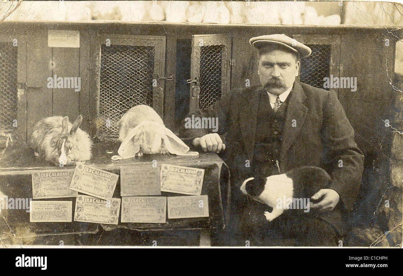 Owner with his prize winning rabbits Stock Photo