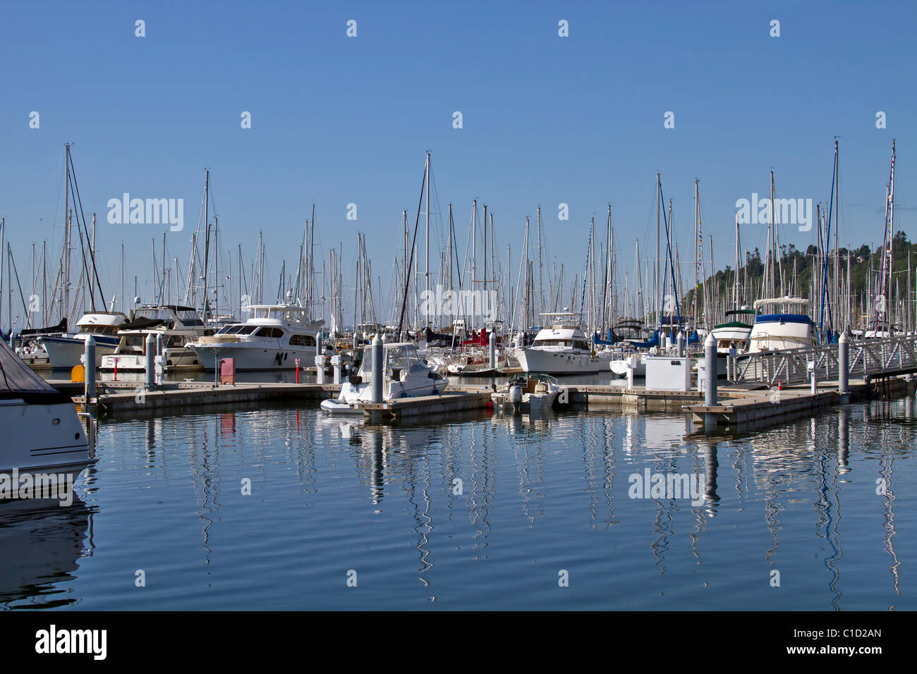 Marina Boat Dock with Clear Blue Sky and Water Reflection - Stock Image