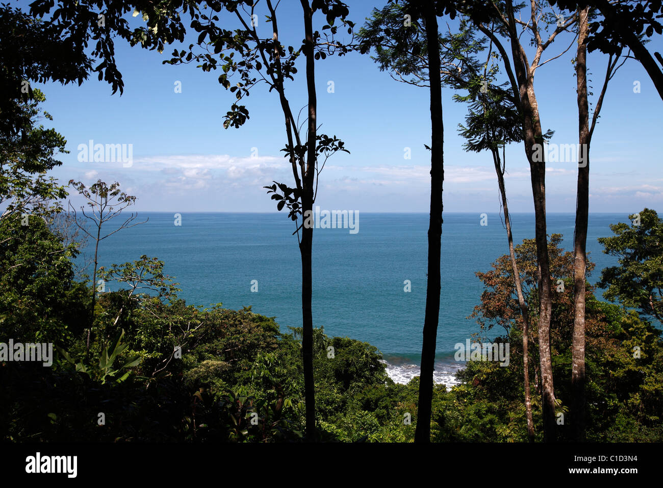 The Pacific ocean seen from a hill on the trail from Drake Bay to Corcovado National Park on the Osa Peninsula, - Stock Image
