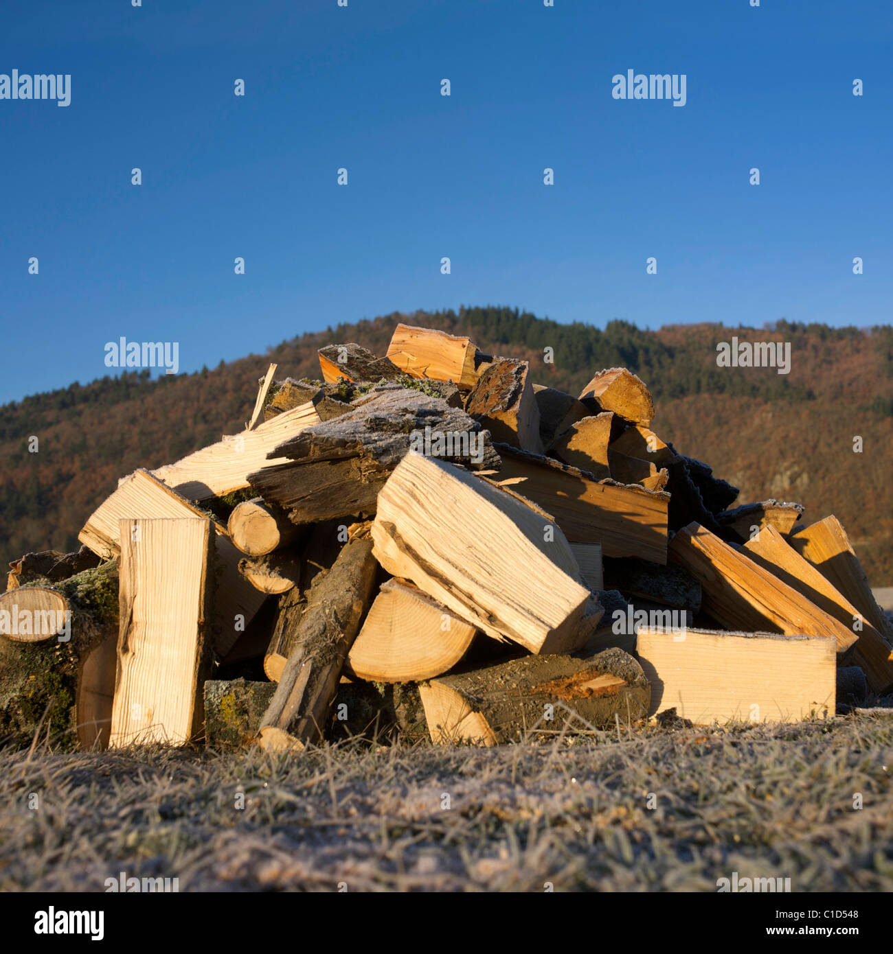 Stack of wood logs outside - Stock Image